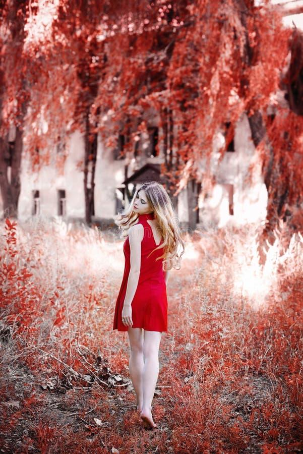 Een blonde in een rode kleding loopt in het park royalty-vrije stock foto