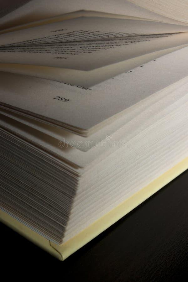 Een boek dat kennis verleent royalty-vrije stock fotografie