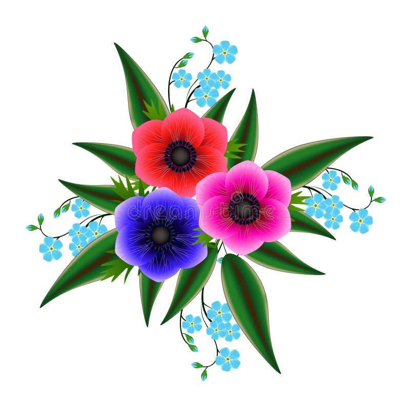 Een boeket van anemonen met vergeet me niet vector illustratie