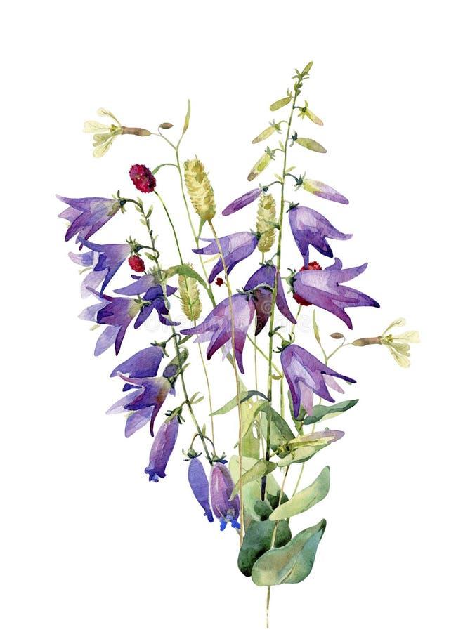Een boeket van bloemen, wilde klokken en bladeren royalty-vrije illustratie