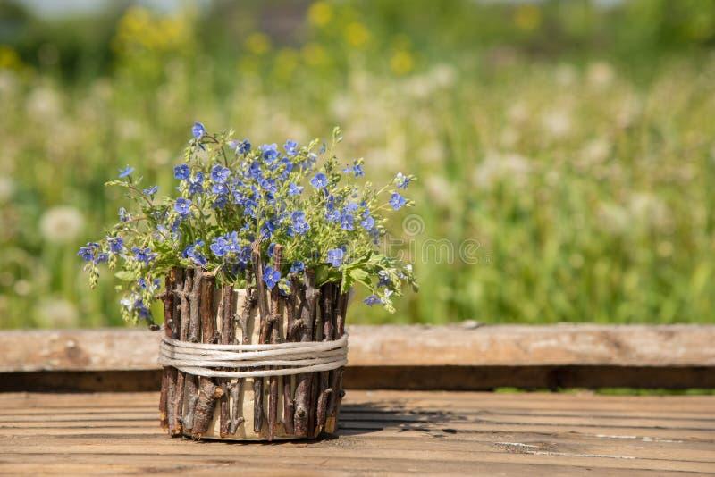 Een boeket van mooie blauwe kleine bloemen riep vergeet-mij-nietjes royalty-vrije stock fotografie
