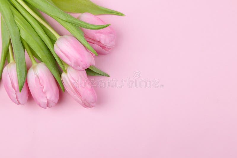 Een boeket van mooie roze tulpen bloeit op een in roze achtergrond De lente vakantie Hoogste mening Vrije plaats Het frame van de stock foto