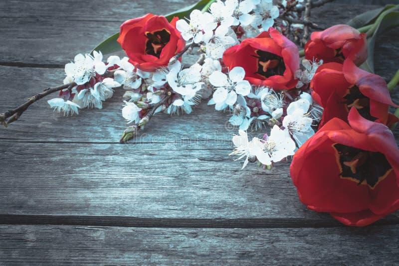 Een boeket van rode tulpen en witte bloemen op een achtergrond van houten, oude raad Plaats voor tekst o royalty-vrije stock afbeeldingen