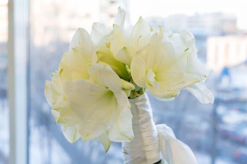 Een boeket van witte Amarilis Bruids, viering en Birhtday-concept Achtergrond stock fotografie
