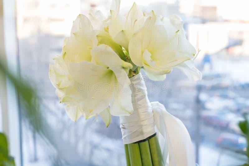 Een boeket van witte Amarilis Bruids, viering en Birhtday-concept Achtergrond royalty-vrije stock foto's