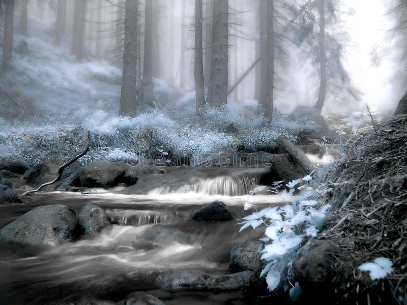 Een bos is in een infrarode kleur stock afbeelding