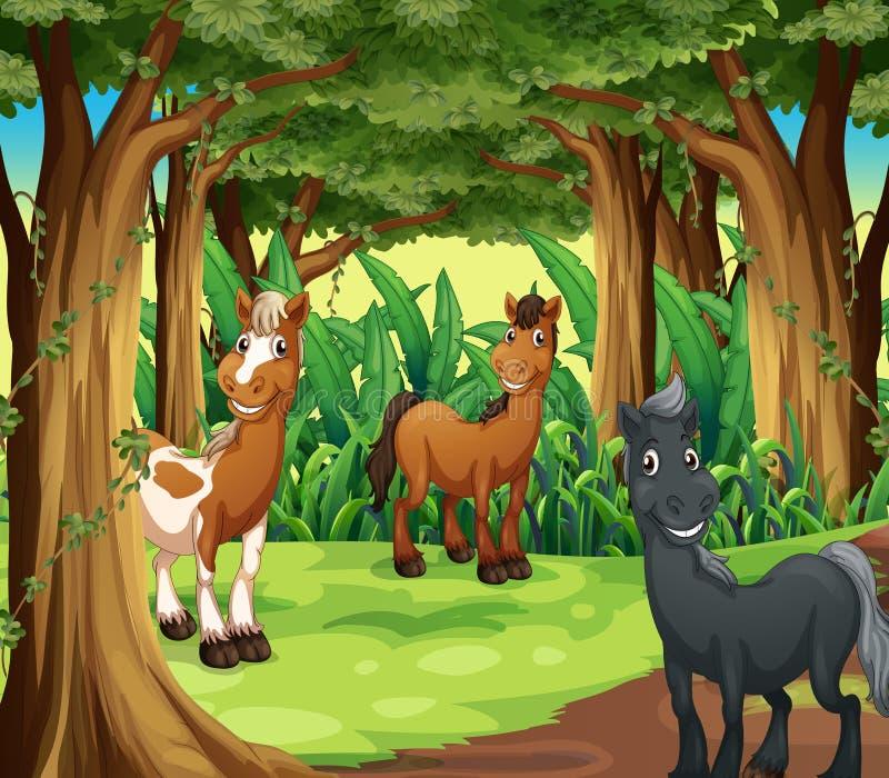 Een bos met drie het glimlachen paarden vector illustratie