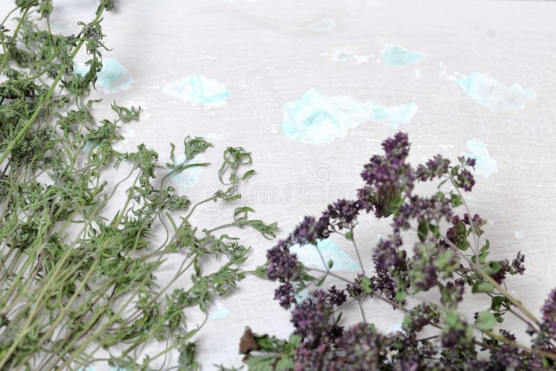 Een bos van droog gras Thymetuin Tegen de achtergrond van de oude muur met schilverf royalty-vrije stock afbeeldingen