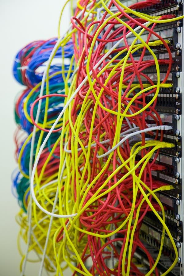 Een bos van netwerkkabels in een gegeven centreert stock afbeelding