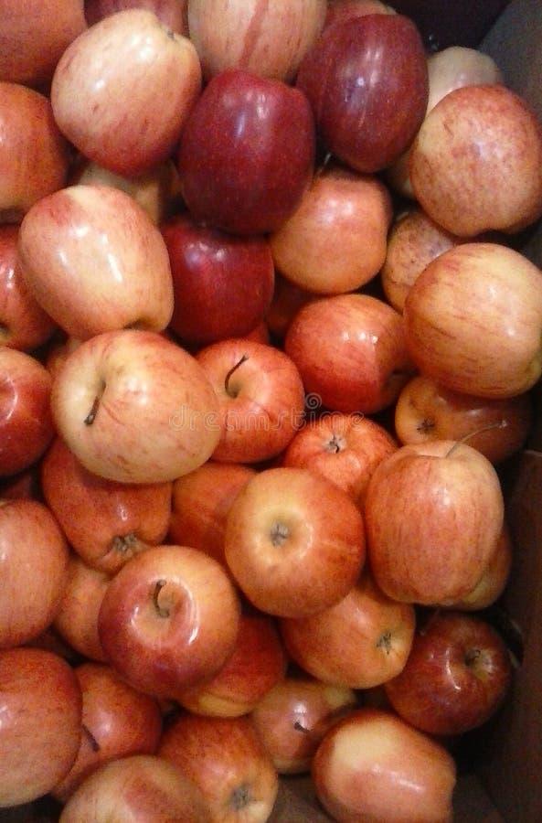 Een bos van rode appelen stock afbeelding