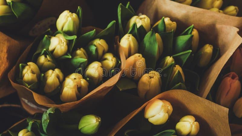 Een bos van tulpen stock fotografie