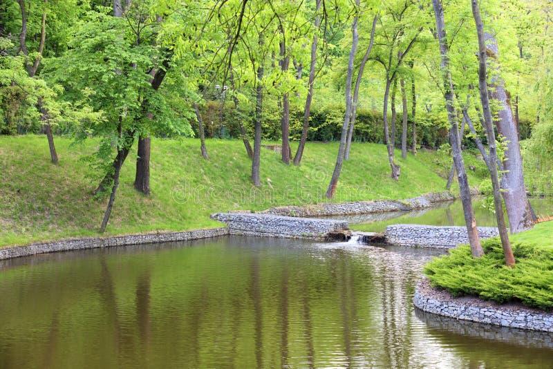 Een bosmeer dat door bomen in een mooi park wordt omringd, dat door keikusten wordt ontworpen in de stralen van zacht licht stock afbeeldingen