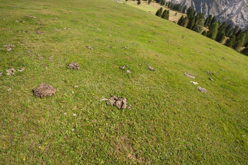 Een breed groen bergweiland in Val di Funes, Italië royalty-vrije stock afbeelding