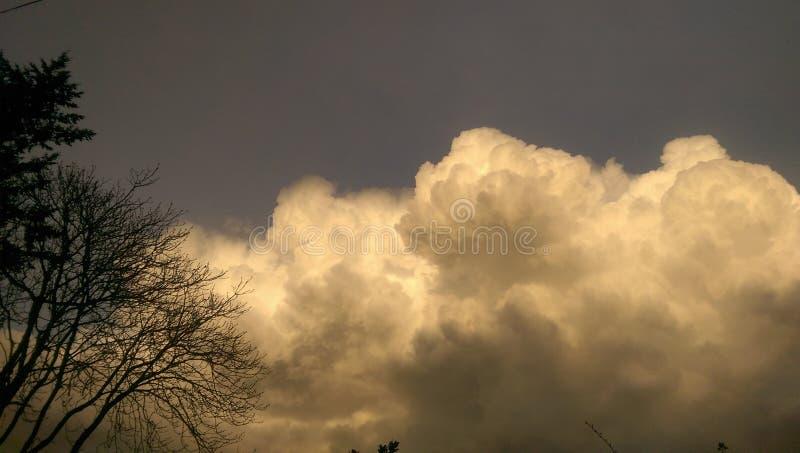 Een brewin van het onweer stock fotografie