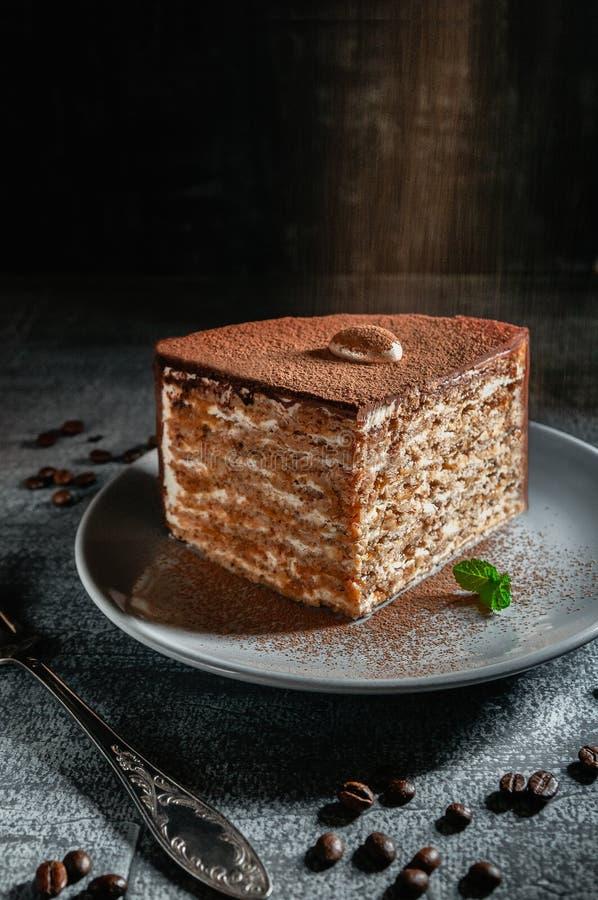 Een brok van chocolade-noot cake dat met grondcacao wordt bestrooid Op een grijze plaat met een twijg van munt Close-up Donkere f stock afbeeldingen