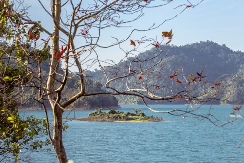 Een brug die neer tot de lagere rand van de dam leiden royalty-vrije stock fotografie