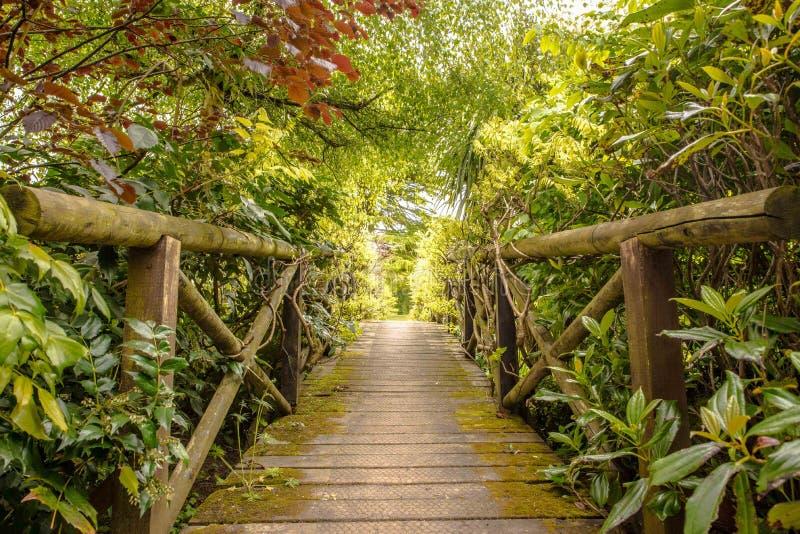 Een brug te ver stock fotografie