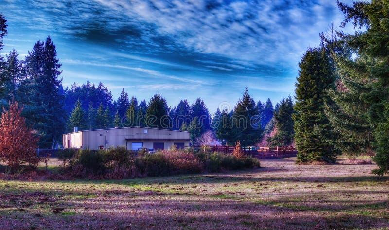 Een bureaugebouw op een aardige zonnige dag in Olympia Washington stock foto's
