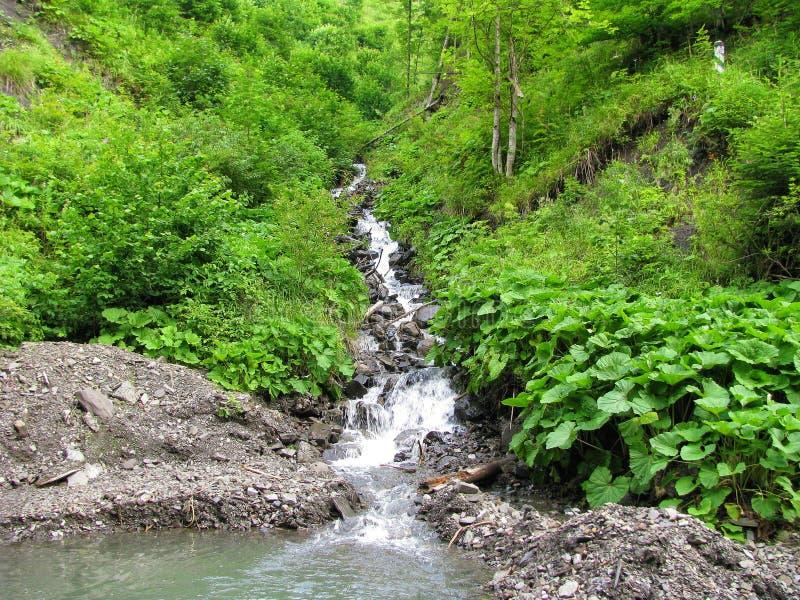 Een cascade van keien op de weg van een snelle bergstroom in de kloof van de Karpatische Bergen royalty-vrije stock foto's