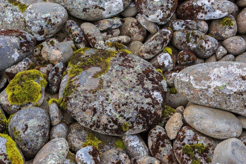 Een cirkel van rotsen met gekleurde mossen worden behandeld dat stock foto