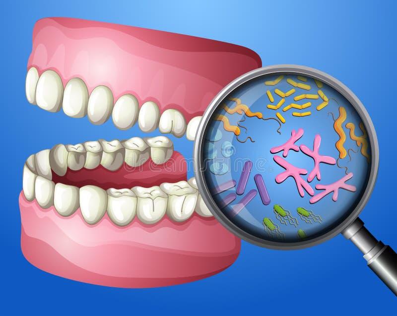 Een Close-up Mondelinge Bacteriën royalty-vrije illustratie