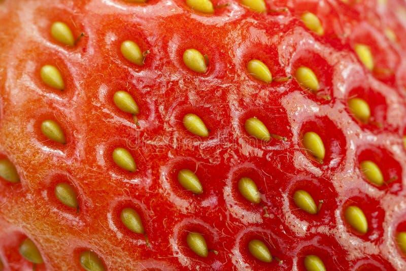 Een close-up van een Ruwe Textuur van de Aardbei van het Fruit royalty-vrije stock afbeelding