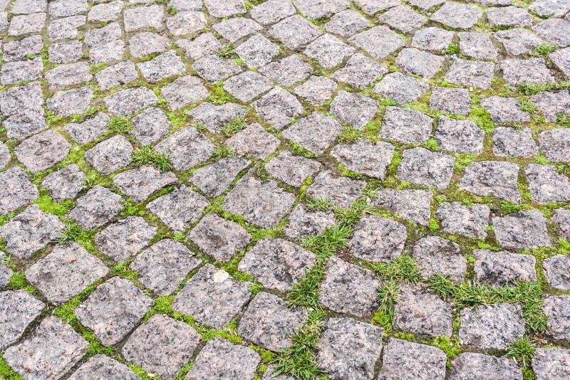 Een close-updeel van stoep, radiaal met vierkante granietstenen wordt bedekt met gras dat binnen - tussen royalty-vrije stock fotografie