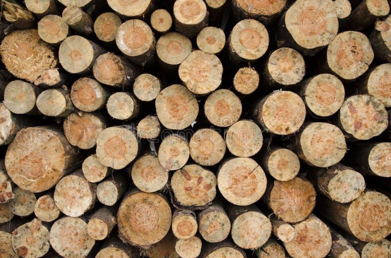 Een close-upmening van een textuur van gesneden houten stapels royalty-vrije stock foto