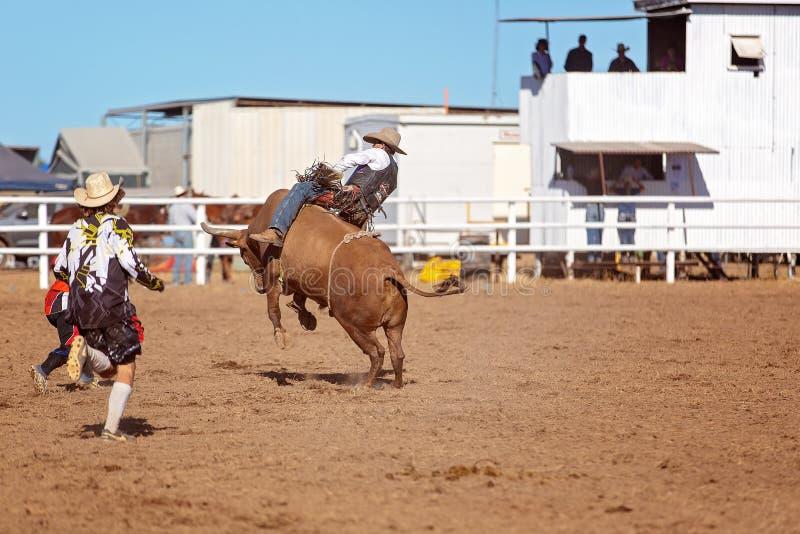 Een cowboy die een hardnekkig verzetten tegende stier berijden royalty-vrije stock foto