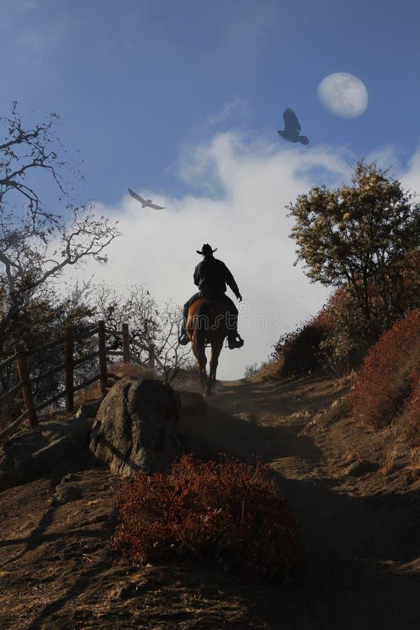 Een cowboy die zijn paard berijden omhoog een heuvel. royalty-vrije stock afbeeldingen