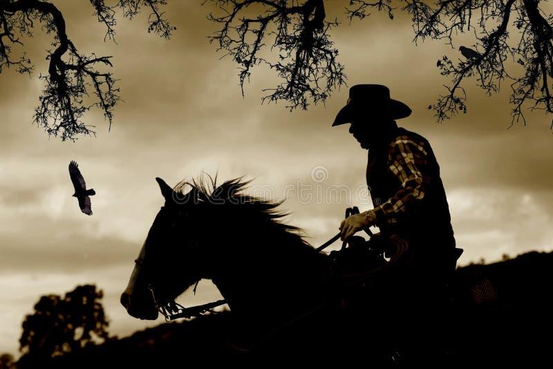 Een cowboy, een paard en vogels in sepia. royalty-vrije stock afbeeldingen