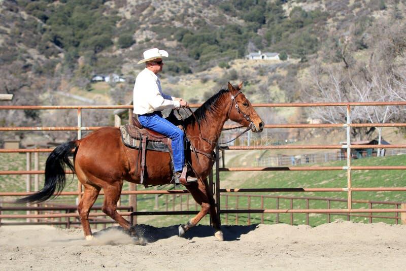 Een Cowboy Riding His Horse royalty-vrije stock afbeeldingen