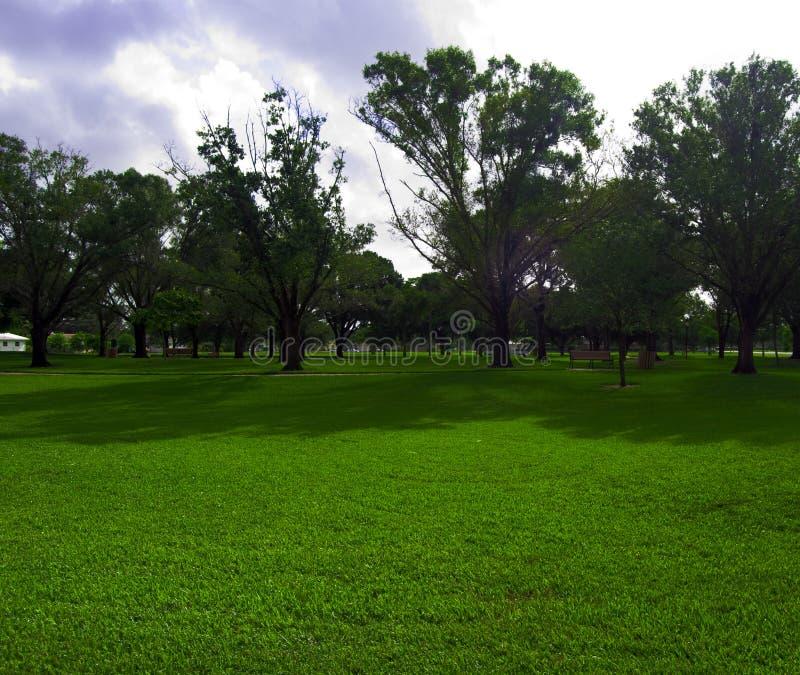 Een dag in het park stock foto