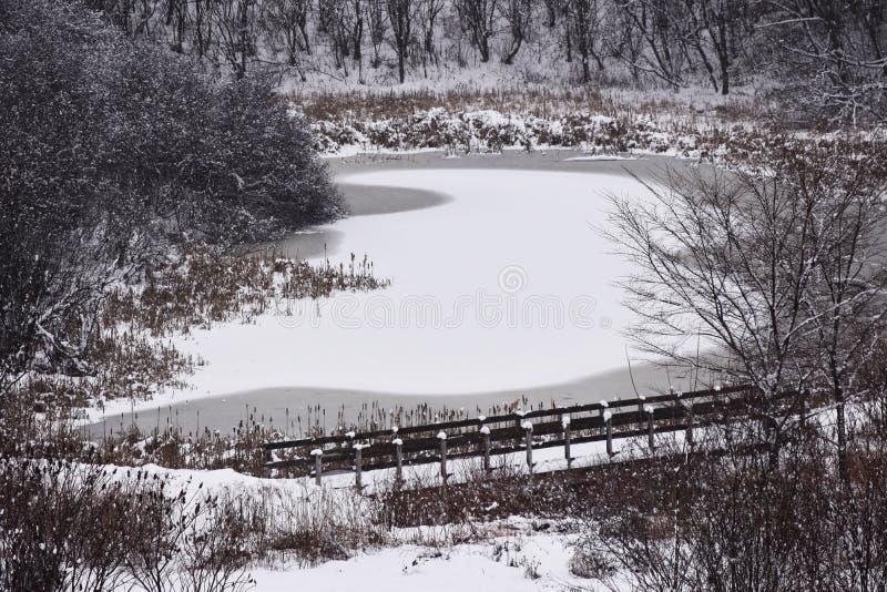 Een dag van sneeuw in Quebec royalty-vrije stock fotografie