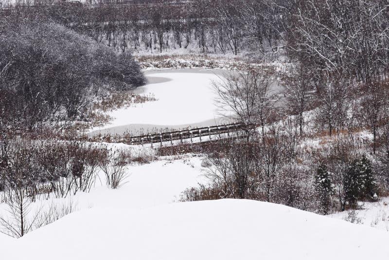 Een dag van sneeuw in Quebec met een overzicht van onze vijver stock afbeelding