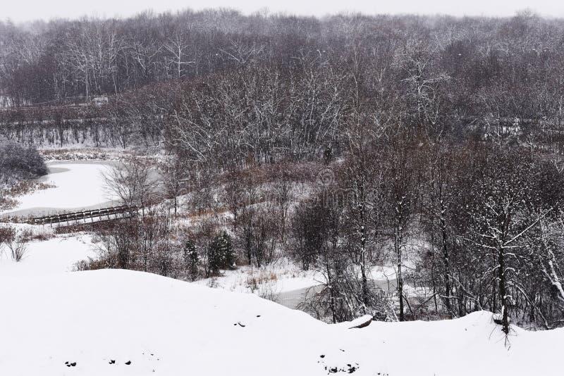 Een dag van sneeuw in Quebec over de vijver stock fotografie