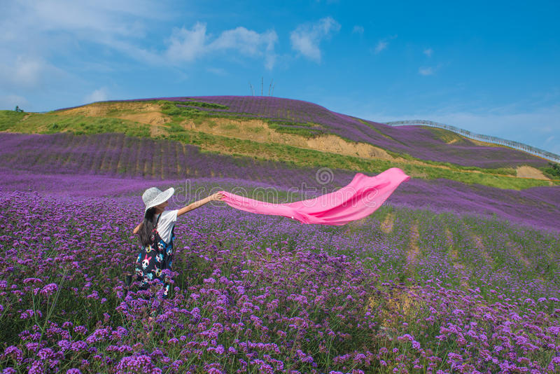 Een Dansend Meisje op Lavendelgebied royalty-vrije stock afbeeldingen