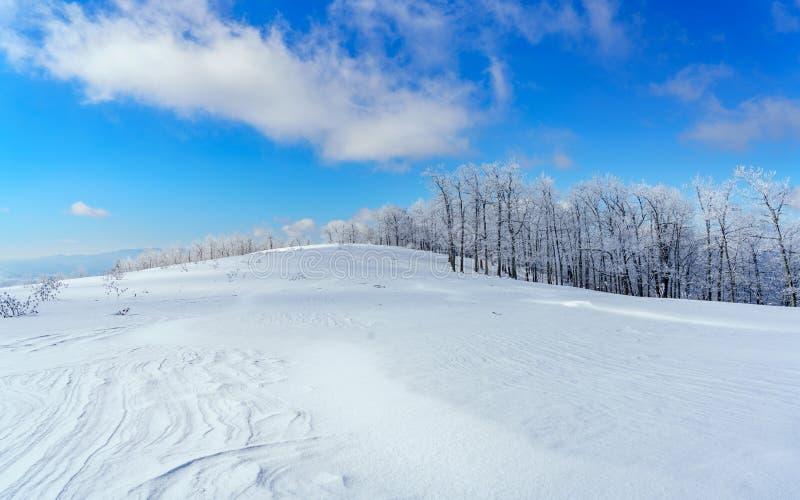 Een de wintersprookjesland royalty-vrije stock afbeeldingen