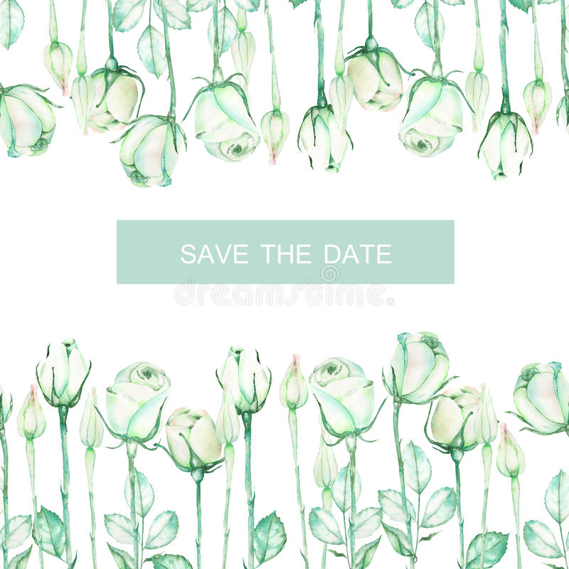 Een decoratieve plaats (banner) met een ornament van de waterverf tedere groene rozen voor een tekst, huwelijksuitnodiging stock illustratie