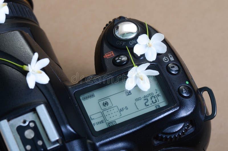 Een deel van camera hoogste mening en uiterst kleine witte bloemen op bovenkant royalty-vrije stock foto's