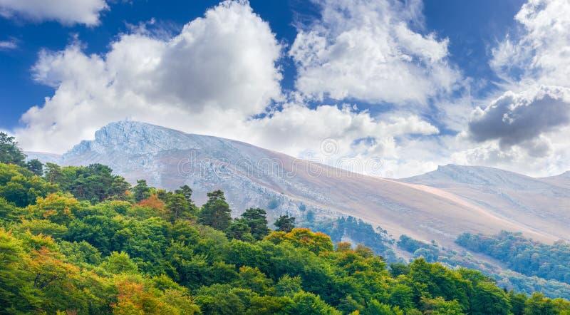 Een deel van de lijstheuvel met bos op een voorgrond royalty-vrije stock fotografie