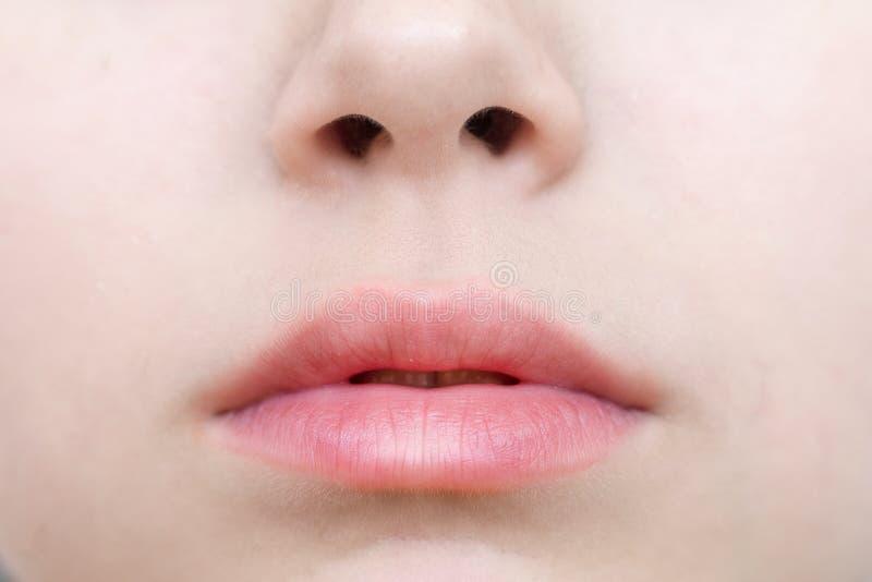 Een deel van gezicht, jonge vrouwen dichte omhooggaand stock afbeelding