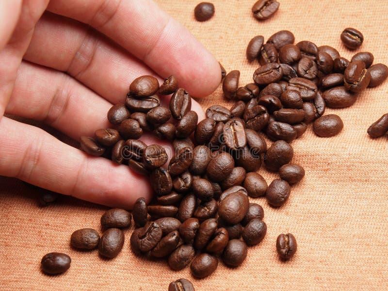 Een deel van hand met de bonen van het koffiegewas op stoffentextiel royalty-vrije stock foto's