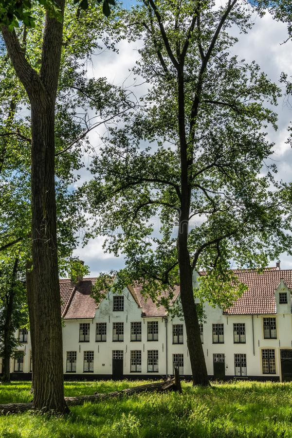 Een deel van ingesloten park van Beguinage in Brugge, Vlaanderen, België stock foto