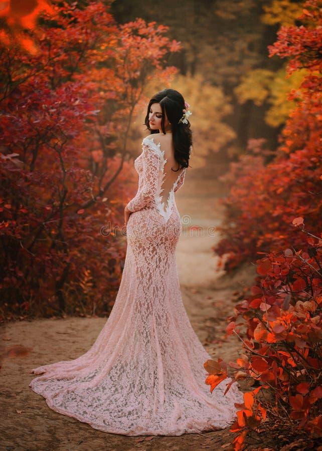 Een donkerbruin meisje met lang haar, in een weelderige roze kleding met een lange trein en een open, verleidelijke rug De dame s stock fotografie