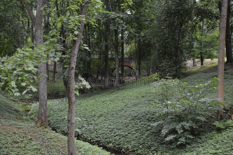Een donkere hoek van een openbaar park stock fotografie