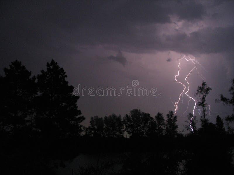 Een dramatische bout van vertakkende bliksem silhouetteert voorgrondbomen royalty-vrije stock afbeelding