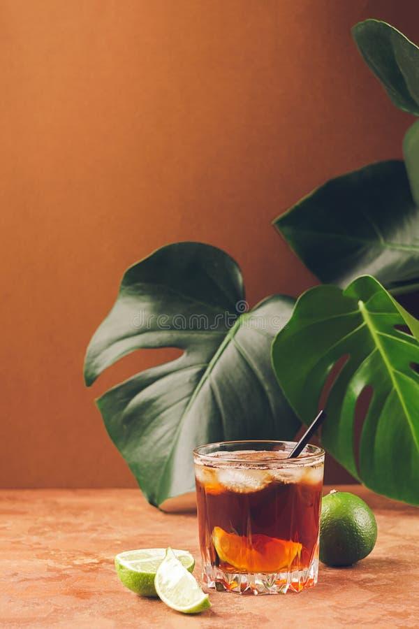 Een drank van rum of kolaijsblokjes en sappige kalk in glasdrinkbekers tegen tropische groene bladeren als achtergrond De ruimte  stock foto's