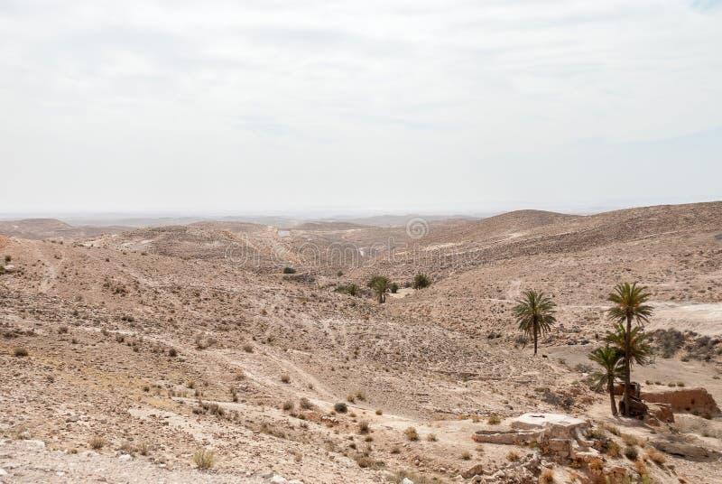 Een droog woestijnlandschap op een bewolkte dag stock fotografie