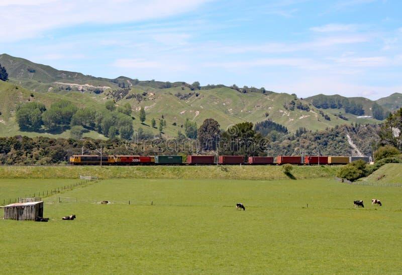 Een dubbele geleide diesel trein die goederenwagens in een ver gebied van Nieuw Zeeland trekken stock afbeelding